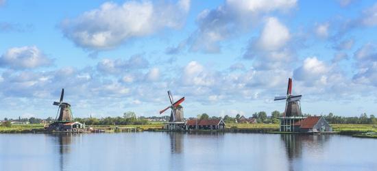 Wann benötigen Sie eine Datenschutzerklärung auch auf Niederländisch
