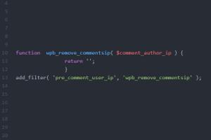 Ein zusätzlicher Code-Schnipsel ist nötig, um mit WordPress den Datenschutz bei den Kommentaren zu wahren.